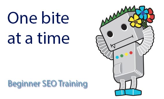 beginner seo training - one bite at a time