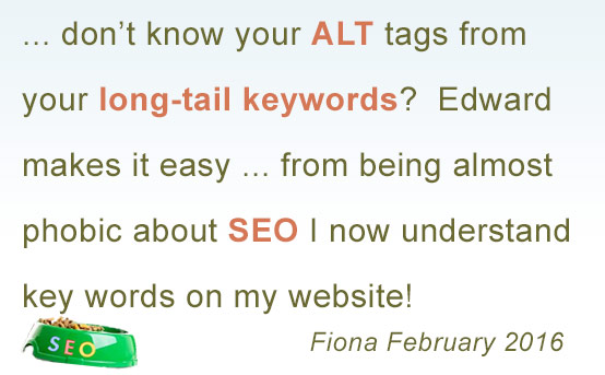 fiona comments on my seo course